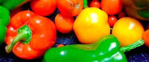 Curso de Manipulador de alimentos en Alicante